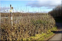 SO7334 : The remains of an old road sign near the Pepper Mill by Bob Embleton
