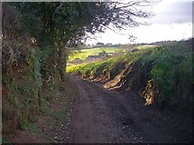 SO7334 : The old road to the Pepper Mill by Bob Embleton
