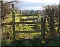 SO7334 : Alignment: stiles, church and radio mast by Bob Embleton