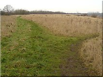 SK5031 : Paths by the Gravel Pits by Andy Jamieson