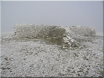 NY6834 : Summit shelter on Cross Fell by Phil Catterall