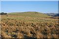 SN7375 : Hillside above Rhos y Gell by Nigel Brown