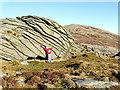 S8044 : Rock Hugger by kevin higgins