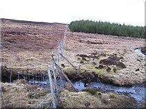 NN7068 : Forestry fence by Richard Webb
