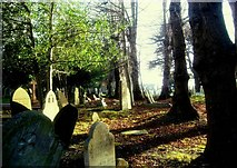 SX9193 : St.. David's  Churchyard by Jan Baker