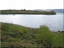 G9819 : Headland on Lough Allen by Oliver Dixon