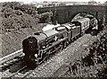 "SU1082 : Merchant Navy Class ""Clan Line"" 35028 loco on running trial near Swindon by P L Chadwick"