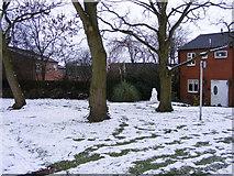 SO9194 : Snowy Green by Gordon Griffiths