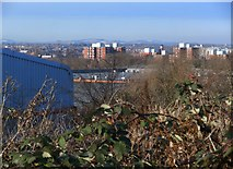 SK5802 : View from Putney Road by Mat Fascione