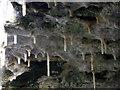 SM9828 : Stalactites under bridge by ceridwen