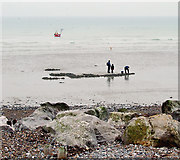 TQ1602 : Low Water, Worthing Beach, West Sussex by Roger  Kidd