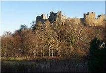 SO5074 : Ludlow Castle by Derek Harper