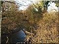 SO4877 : River Onny at Bromfield by Derek Harper