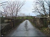 H1295 : Narrow bridge near Ballybofey by louise price