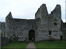 ST5394 : Chepstow castle by andy dolman