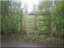 TQ8959 : Kissing Gate on Hawks Hill Lane by David Anstiss