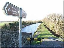 O0236 : Royal Canal Way at Collins Bridge, near Lucan, Co. Dublin by JP