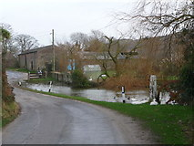 SY9282 : East Creech: lane and pond by Chris Downer