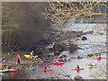 NZ0416 : Kayaks embark on The Tees at Barnard Castle by David Hawgood