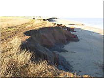 TA3624 : The beach north of Holmpton by Andy Beecroft