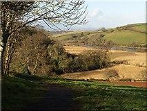 SX8158 : Dart Valley Trail north of Sharpham (2) by Derek Harper