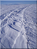 NJ2211 : Snow Patterns on Carn Ealasaid Track by Dorothy Carse