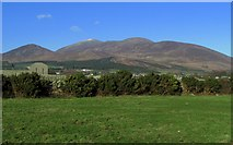 J3520 : Towards the Mourne mountains by Rossographer