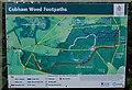 TQ6868 : Cobham Wood Footpaths Sign by Martin Beale