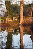 TL8063 : Moat reflections by Bob Jones