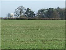 TL5523 : Field near Stansted Airport by Thomas Nugent
