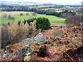 NU0724 : Above the forest at Hepburn Crags by Andrew Curtis