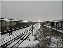 TL4658 : Points in the snow by Keith Edkins
