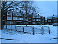 SU6505 : A snowy scene by the flats in Old Wymering Lane by Basher Eyre