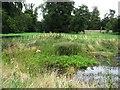TL4953 : Dew Pond - Wandlebury by Sandy B