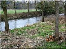 ST9102 : River Stour, Spetisbury by Maigheach-gheal