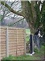 ST9202 : Border Collie, Tarrant Crawford by Maigheach-gheal