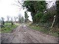 ST9202 : Bridleway near Tarrant Crawford by Maigheach-gheal