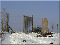 SK3455 : Triangulation Pillar on Crich Stand by Alan Murray-Rust