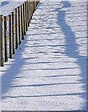 TQ2996 : Snow patterns, South Lodge Farm, Enfield by Christine Matthews