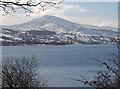 SH9134 : Llyn Tegid near Llanycil by Dylan Moore