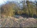 TQ8556 : Farm pond in field by David Anstiss