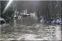 SP5206 : River Cherwell. by Chris Denny