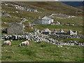 G5589 : Derelict cottages at Port by Joseph Mischyshyn
