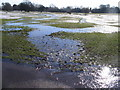 SP3277 : Water hazard, Memorial Park by E Gammie