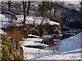 NY7441 : River in winter by Joan Sykes