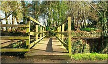 J4682 : Footbridge, Crawfordsburn by Albert Bridge