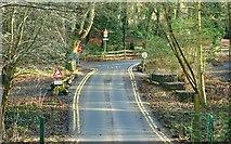 J4681 : Two roads, Crawfordsburn Country Park by Albert Bridge