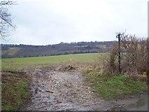 TQ6761 : Footpath on Stangate Road by David Anstiss