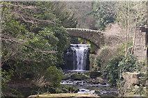 NZ2567 : The waterfall in Jesmond Dene by John Lee Cockton