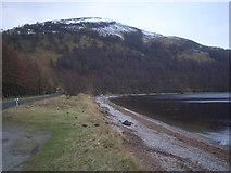 NN6557 : Shoreline at Loch Rannoch by Nick Mutton